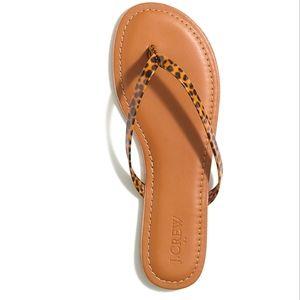 J Crew Tortoise Easy Summer Flip Flops Size 12